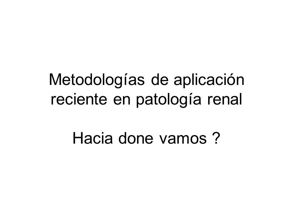 Metodologías de aplicación reciente en patología renal Hacia done vamos