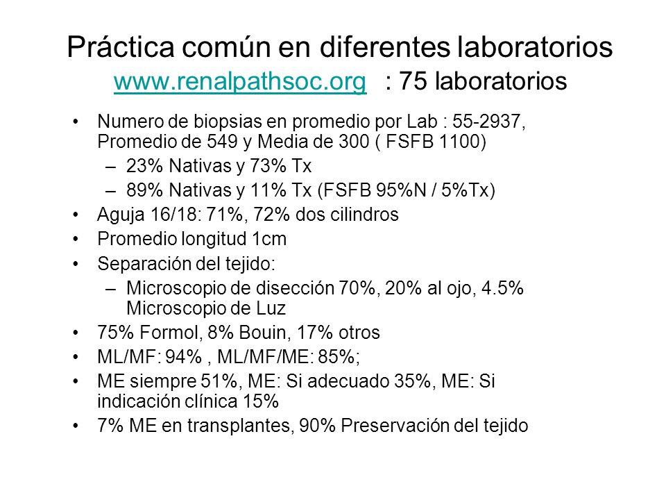 Práctica común en diferentes laboratorios www. renalpathsoc