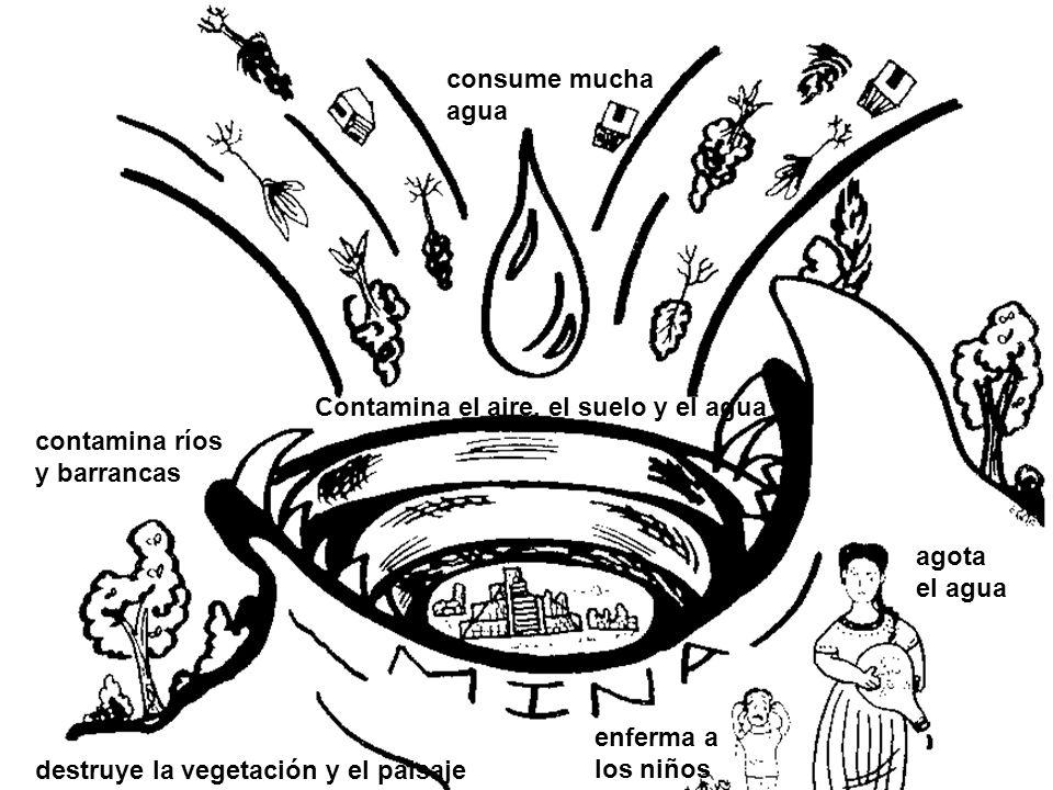 . consume mucha agua Contamina el aire, el suelo y el agua