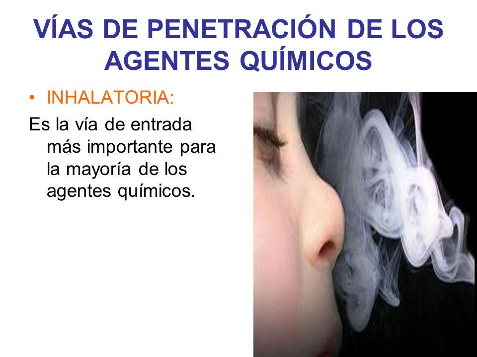 VÍAS DE PENETRACIÓN DE LOS AGENTES QUÍMICOS