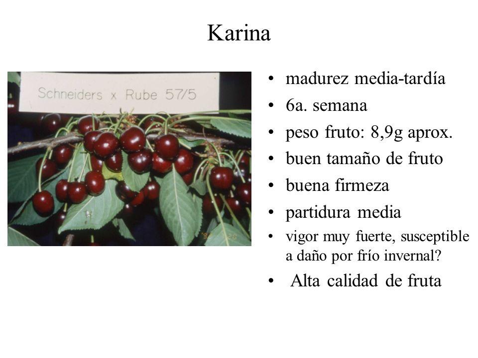 Karina madurez media-tardía 6a. semana peso fruto: 8,9g aprox.