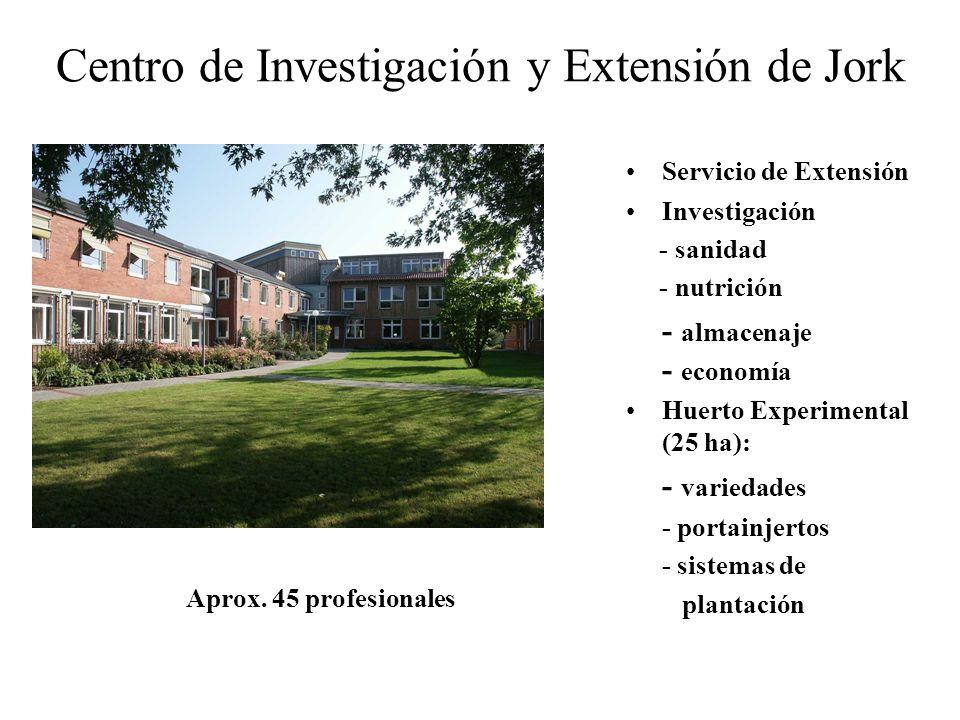Centro de Investigación y Extensión de Jork