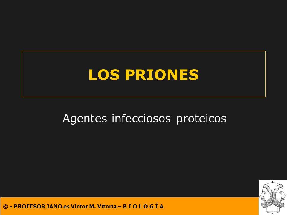 Agentes infecciosos proteicos