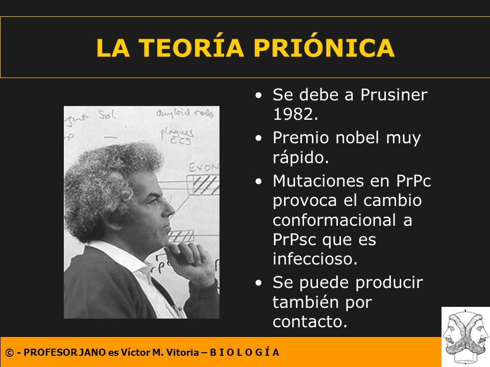 LA TEORÍA PRIÓNICA Se debe a Prusiner 1982. Premio nobel muy rápido.
