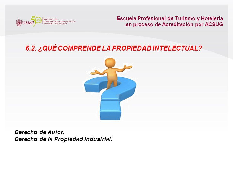 6.2. ¿Qué comprende la propiedad intelectual