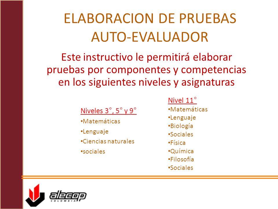 ELABORACION DE PRUEBAS AUTO-EVALUADOR