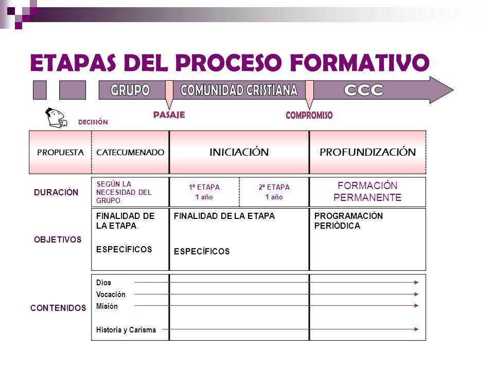ETAPAS DEL PROCESO FORMATIVO