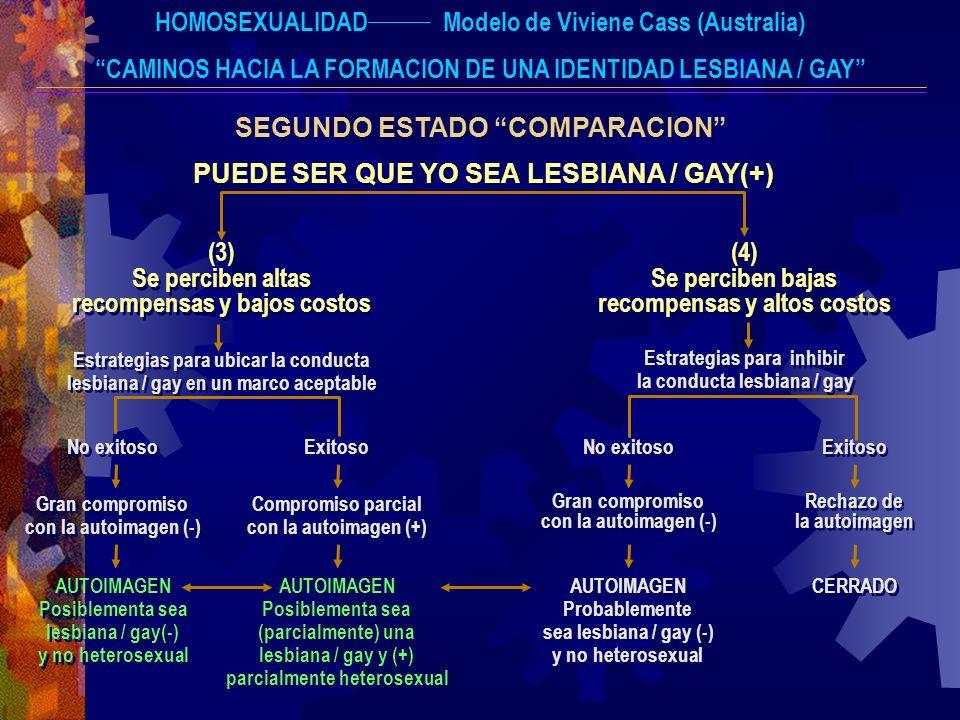 HOMOSEXUALIDAD Modelo de Viviene Cass (Australia)