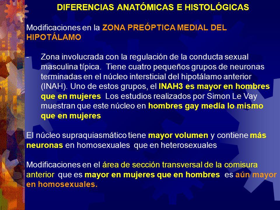 DIFERENCIAS ANATÓMICAS E HISTOLÓGICAS