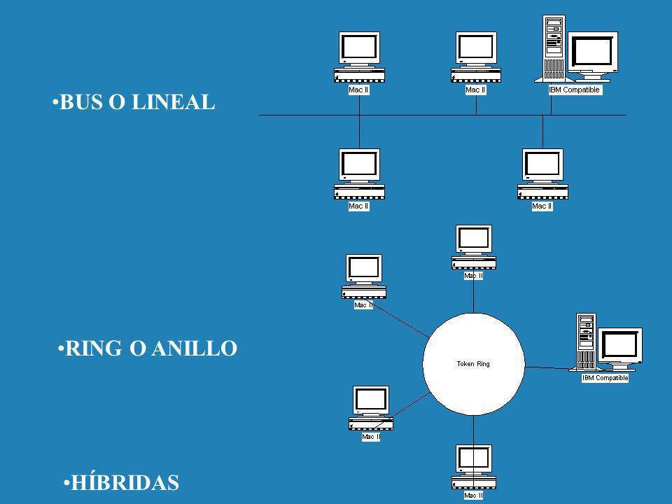 BUS O LINEAL RING O ANILLO HÍBRIDAS