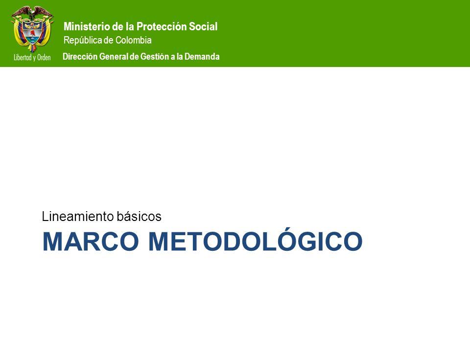 Lineamiento básicos Marco metodológico