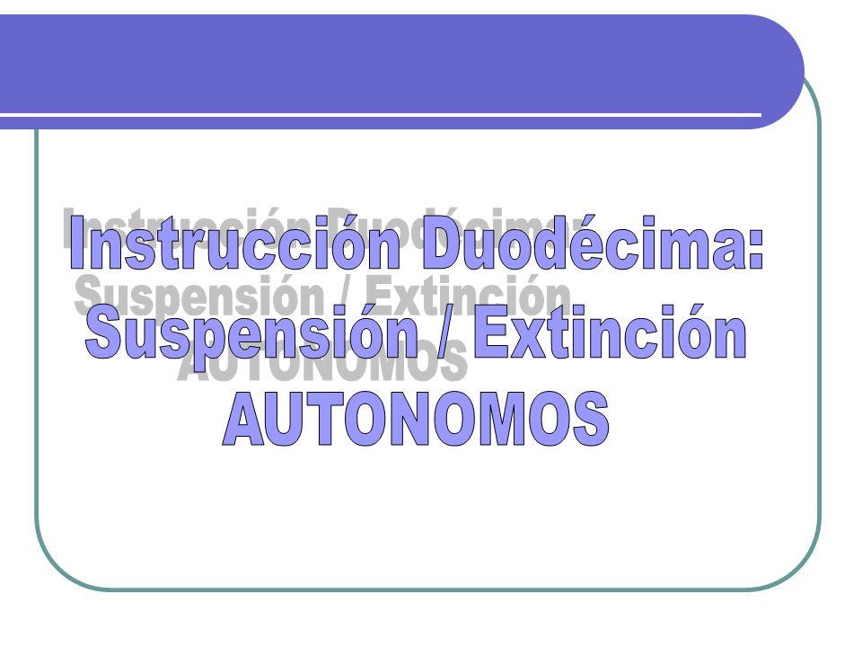Instrucción Duodécima: Suspensión / Extinción