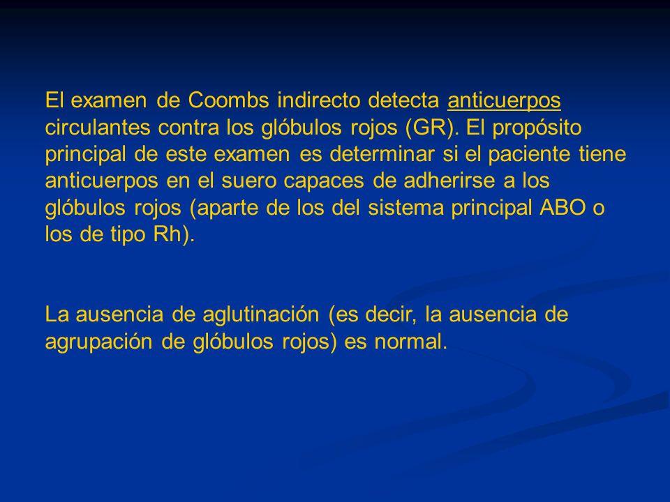 El examen de Coombs indirecto detecta anticuerpos circulantes contra los glóbulos rojos (GR). El propósito principal de este examen es determinar si el paciente tiene anticuerpos en el suero capaces de adherirse a los glóbulos rojos (aparte de los del sistema principal ABO o los de tipo Rh).