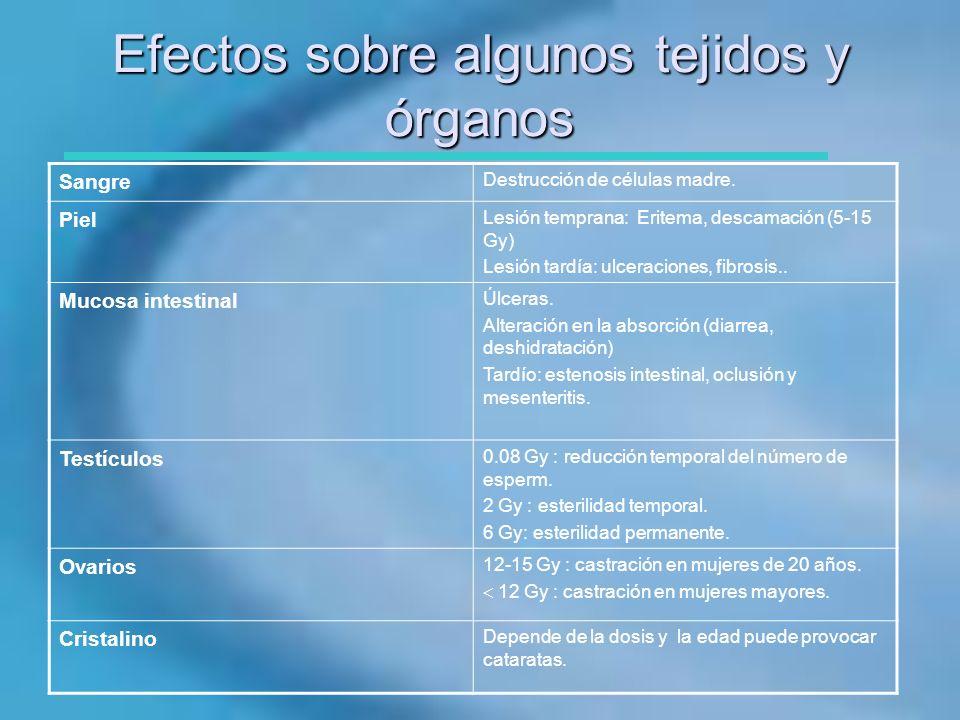 Efectos sobre algunos tejidos y órganos