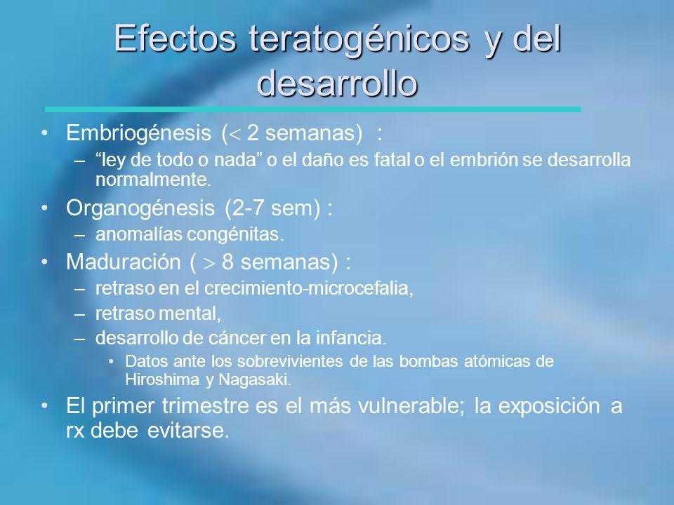 Efectos teratogénicos y del desarrollo
