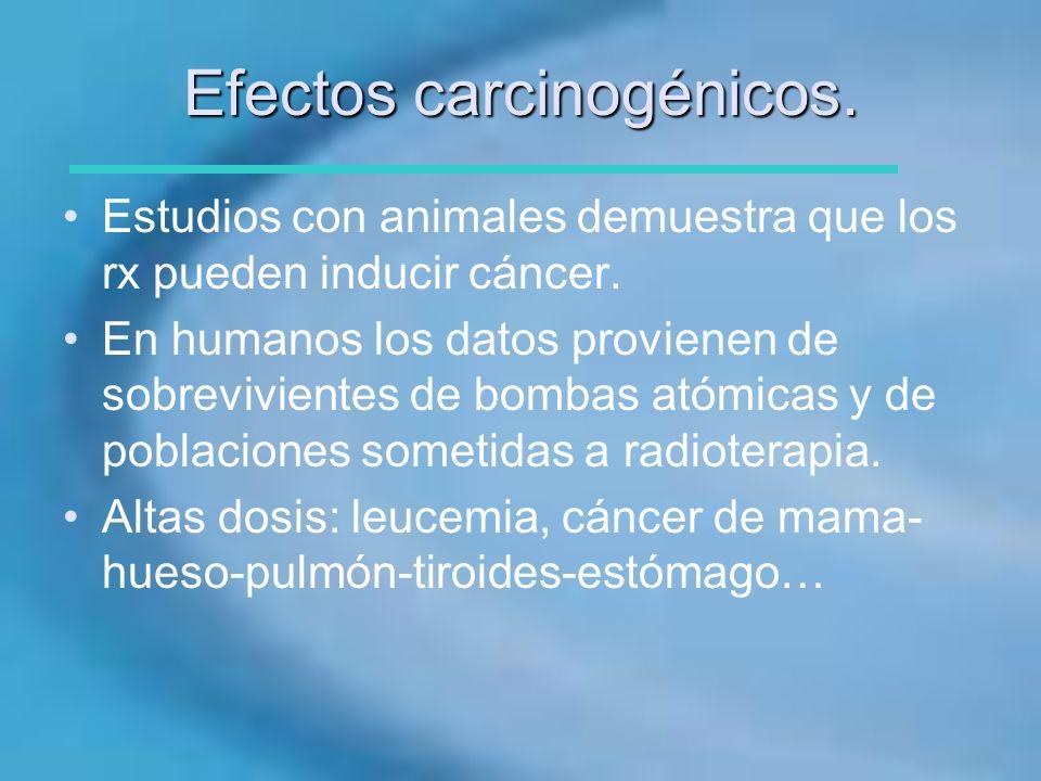 Efectos carcinogénicos.