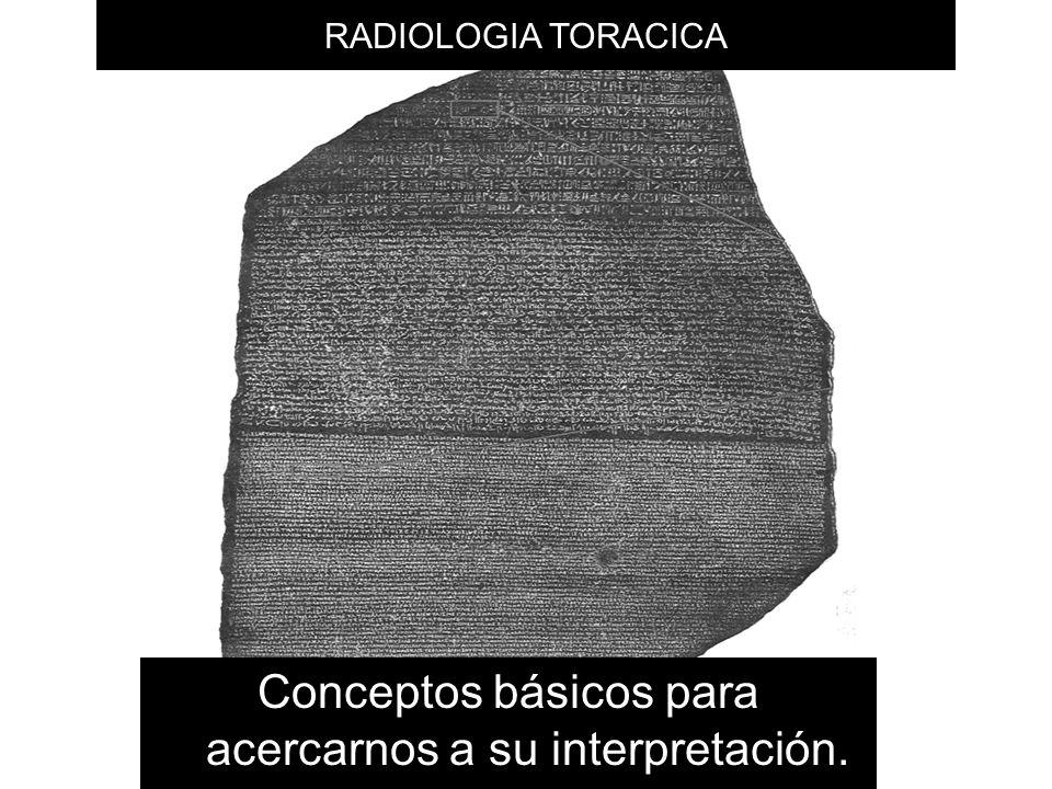 Conceptos básicos para acercarnos a su interpretación.