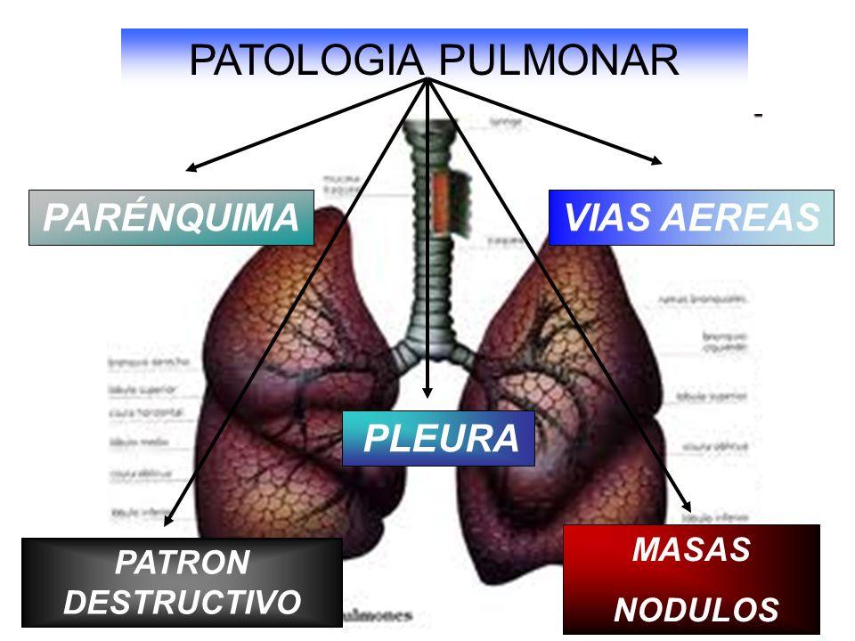 PATOLOGIA PULMONAR PARÉNQUIMA VIAS AEREAS MASAS PATRON DESTRUCTIVO