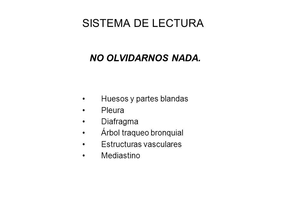 SISTEMA DE LECTURA Huesos y partes blandas Pleura Diafragma
