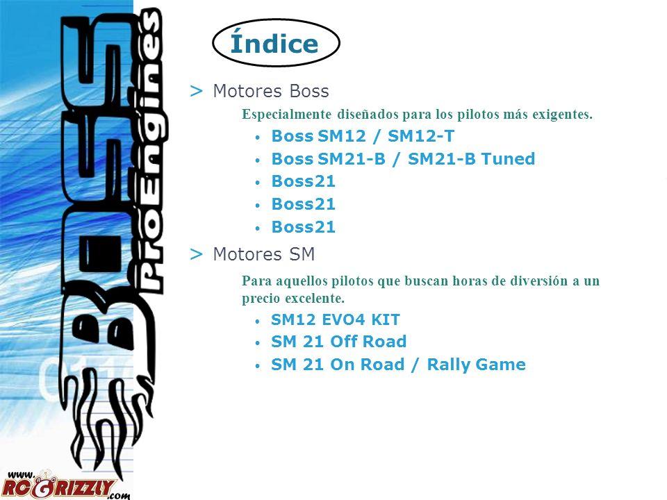 Índice Motores Boss Motores SM Boss SM12 / SM12-T