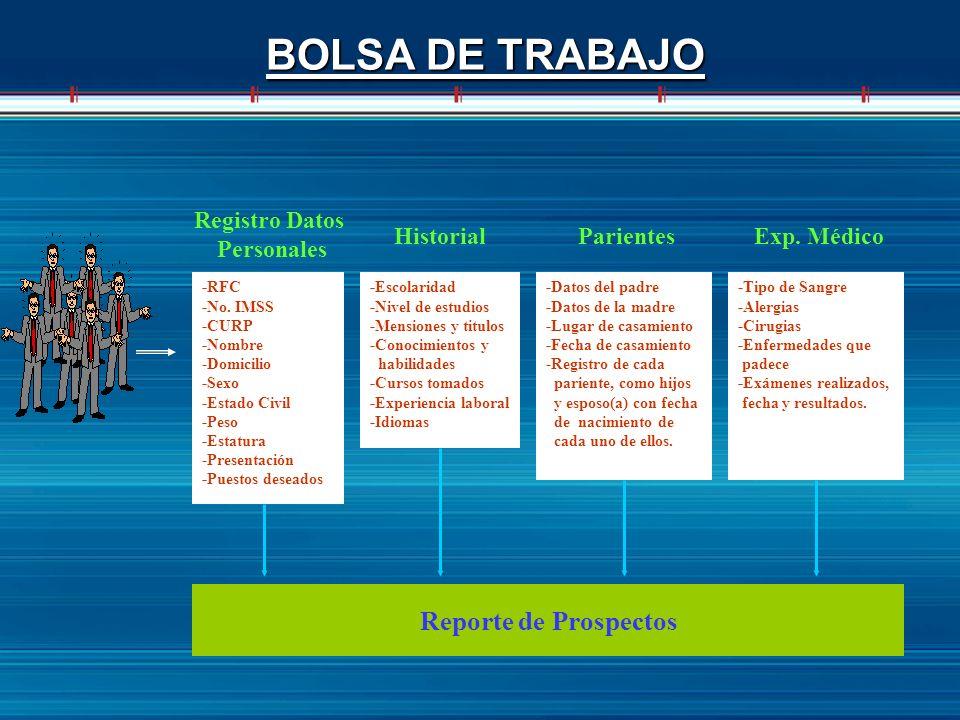 BOLSA DE TRABAJO Reporte de Prospectos Registro Datos Personales