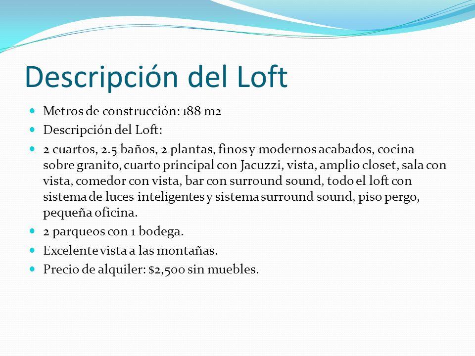 Descripción del Loft Metros de construcción: 188 m2