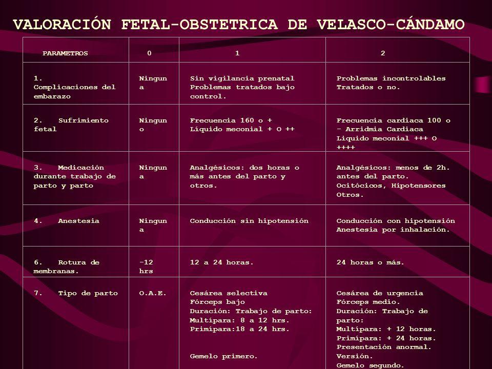 VALORACIÓN FETAL-OBSTETRICA DE VELASCO-CÁNDAMO