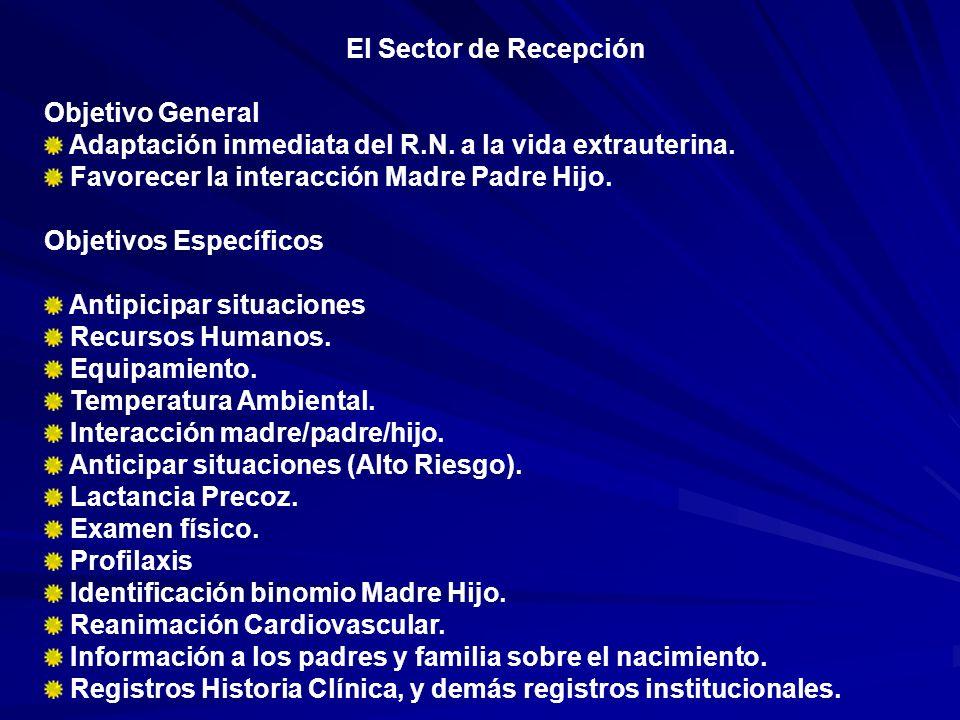 El Sector de Recepción Objetivo General. Adaptación inmediata del R.N. a la vida extrauterina. Favorecer la interacción Madre Padre Hijo.
