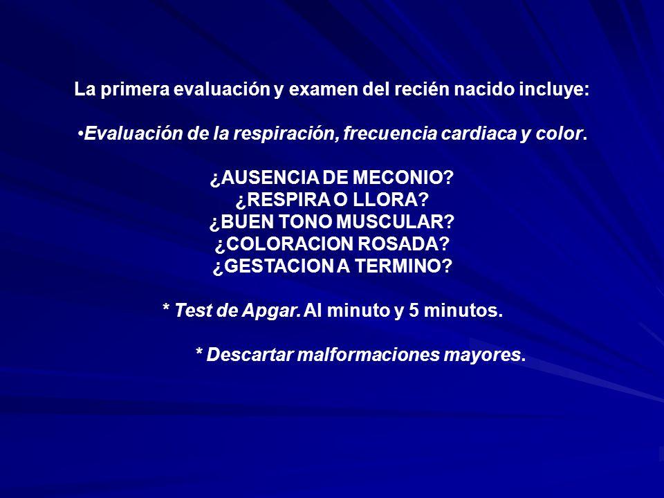 La primera evaluación y examen del recién nacido incluye: