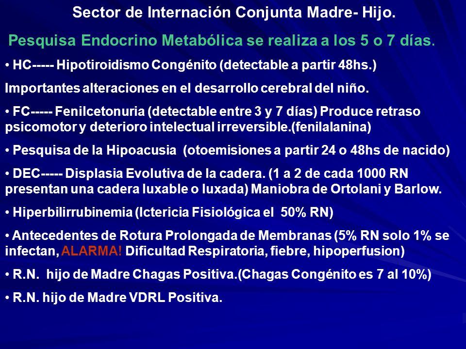 Sector de Internación Conjunta Madre- Hijo.