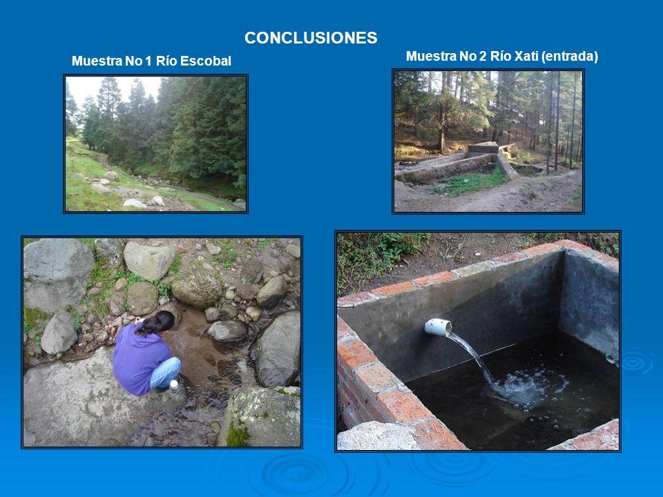 CONCLUSIONES Muestra No 2 Río Xati (entrada) Muestra No 1 Río Escobal