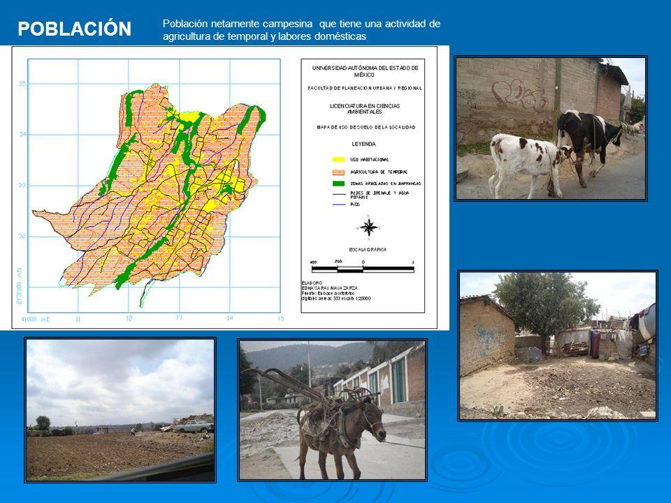 POBLACIÓN Población netamente campesina que tiene una actividad de agricultura de temporal y labores domésticas.