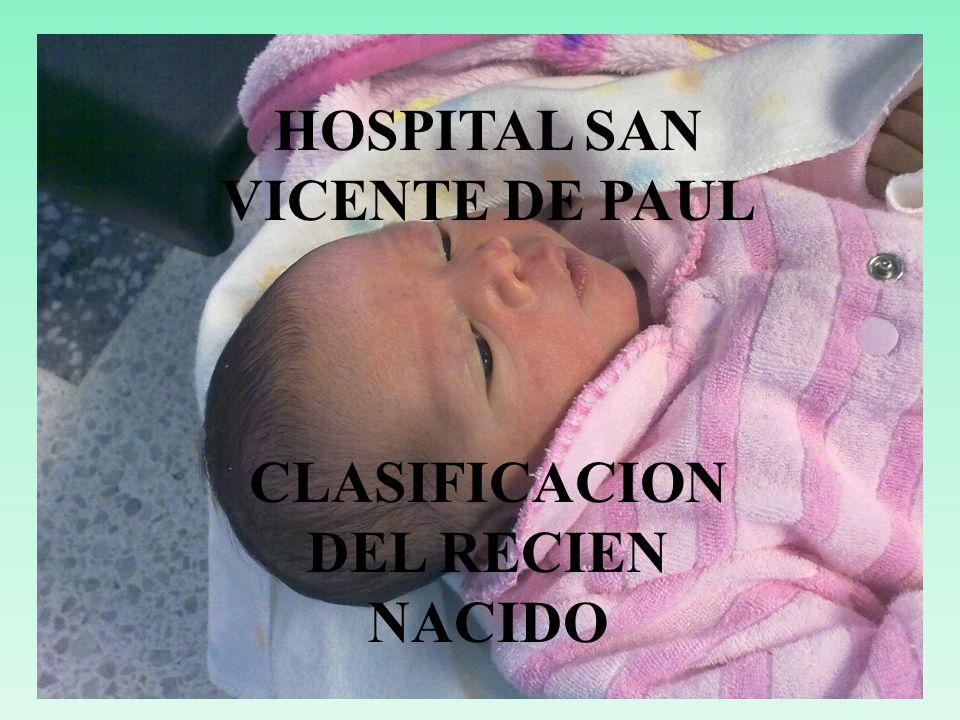 HOSPITAL SAN VICENTE DE PAUL CLASIFICACION DEL RECIEN NACIDO