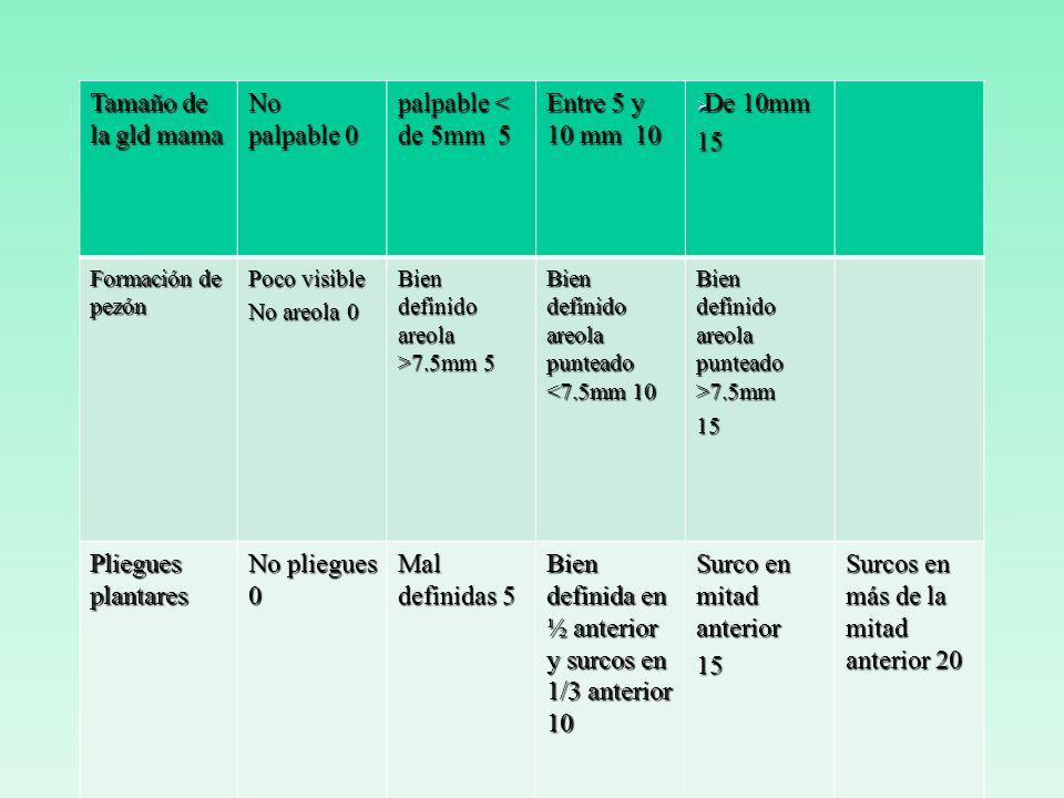 Bien definida en ½ anterior y surcos en 1/3 anterior 10