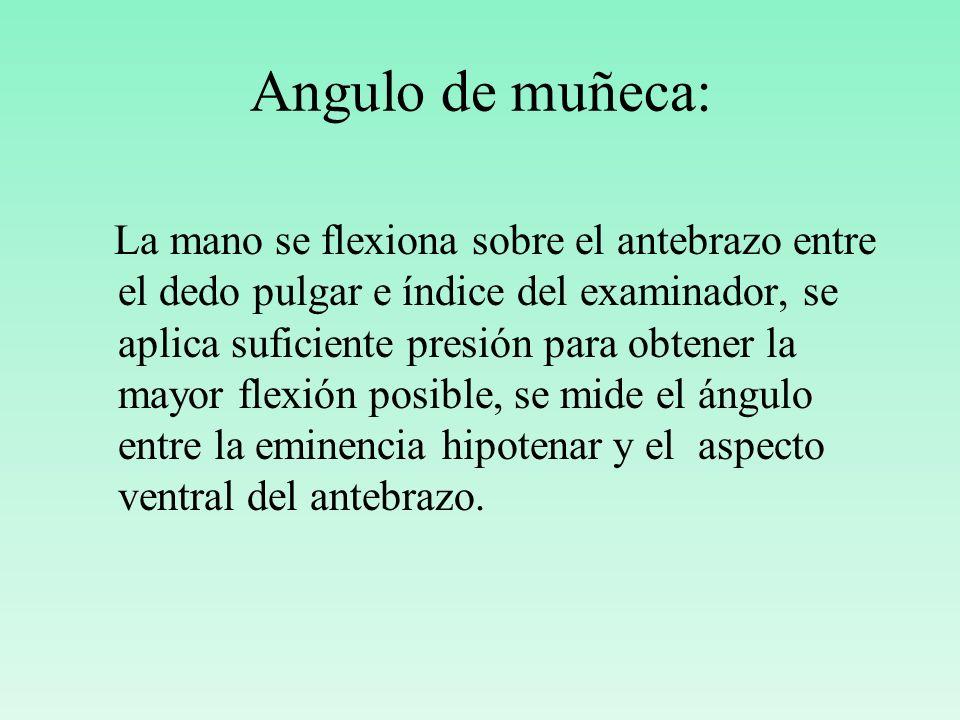 Angulo de muñeca:
