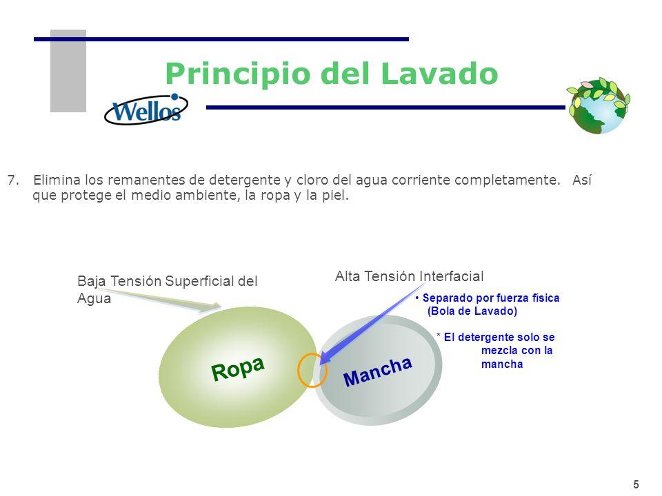 Principio del Lavado Ropa Mancha Alta Tensión Interfacial