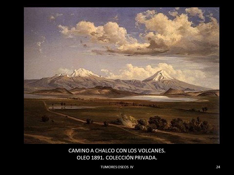 CAMINO A CHALCO CON LOS VOLCANES. OLEO 1891. COLECCIÓN PRIVADA.