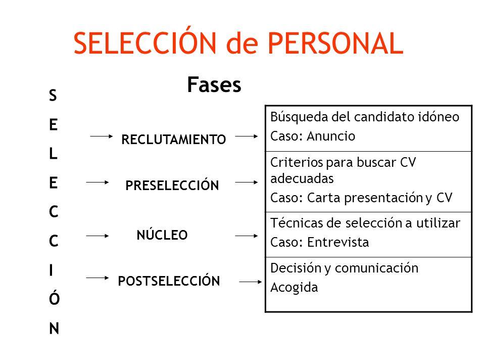 SELECCIÓN de PERSONAL Fases S E L C I Ó N