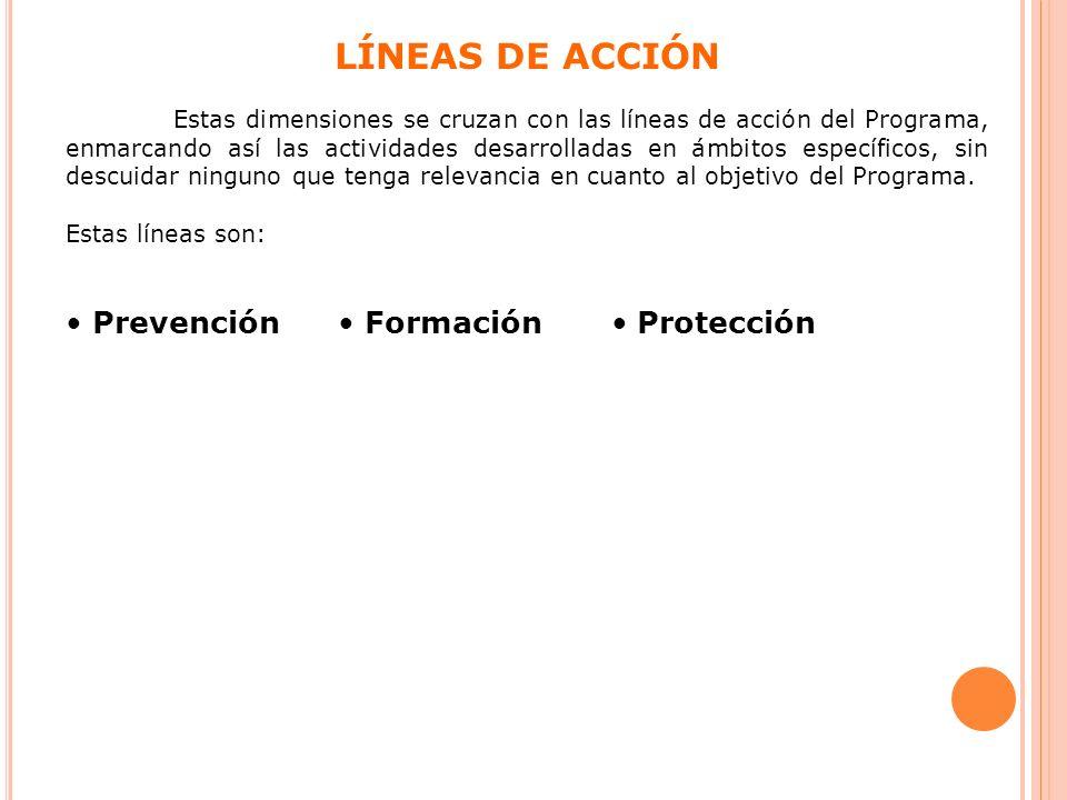 LÍNEAS DE ACCIÓN • Prevención • Formación • Protección