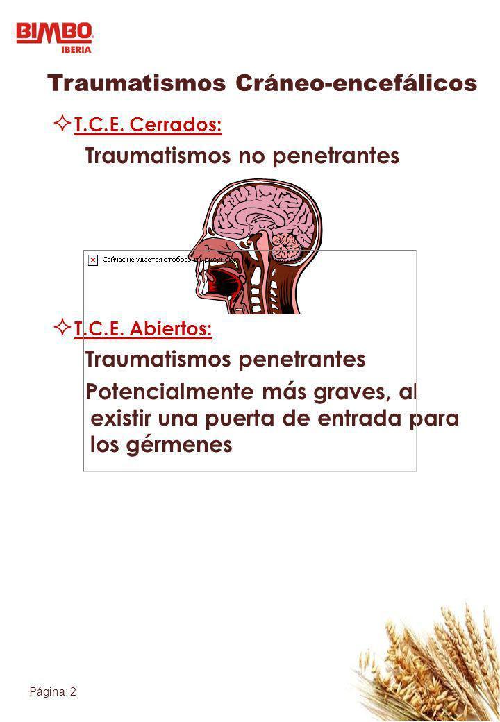 Traumatismos Cráneo-encefálicos