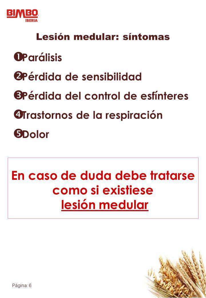 Lesión medular: síntomas