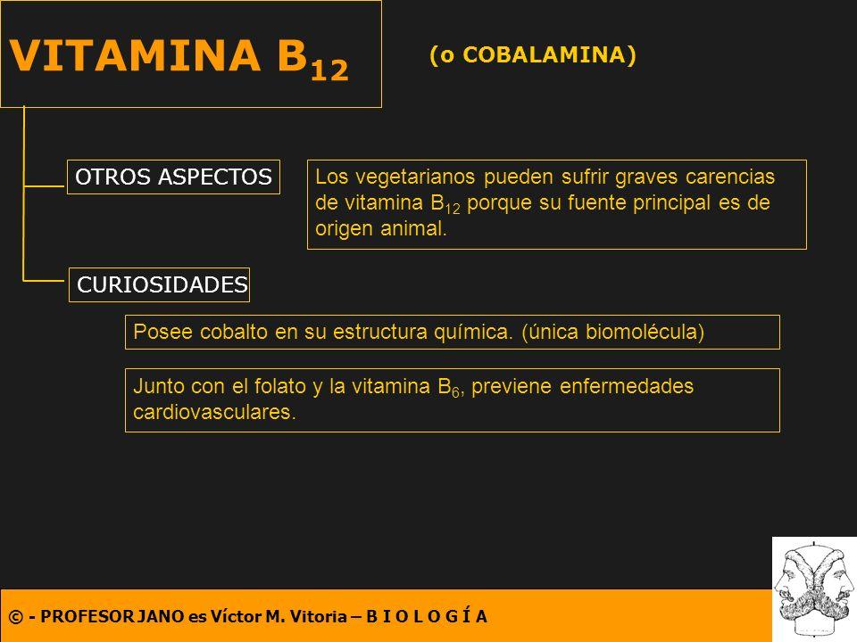 VITAMINA B12 (o COBALAMINA) OTROS ASPECTOS