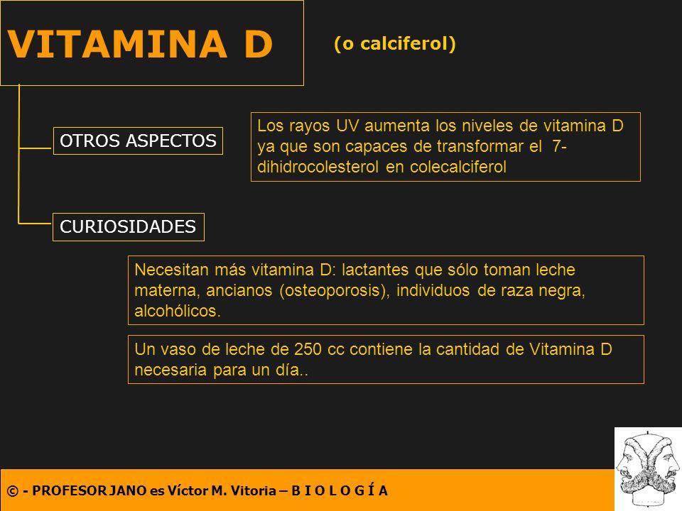VITAMINA D (o calciferol)
