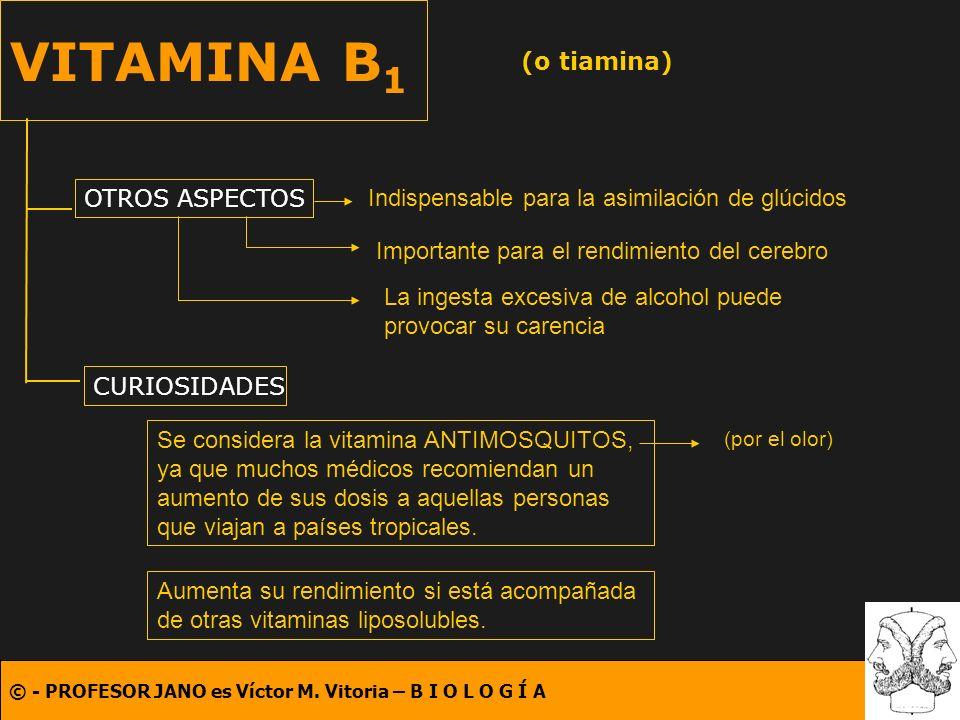 VITAMINA B1 (o tiamina) OTROS ASPECTOS