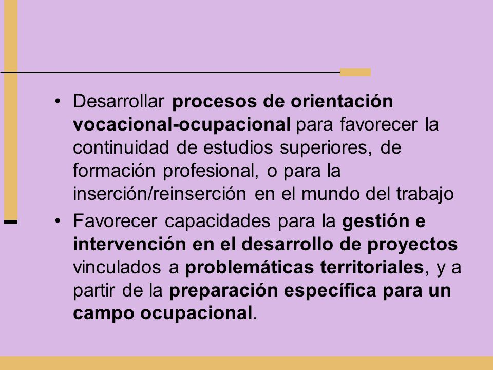 Desarrollar procesos de orientación vocacional-ocupacional para favorecer la continuidad de estudios superiores, de formación profesional, o para la inserción/reinserción en el mundo del trabajo