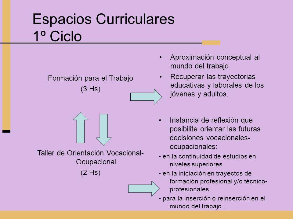Espacios Curriculares 1º Ciclo