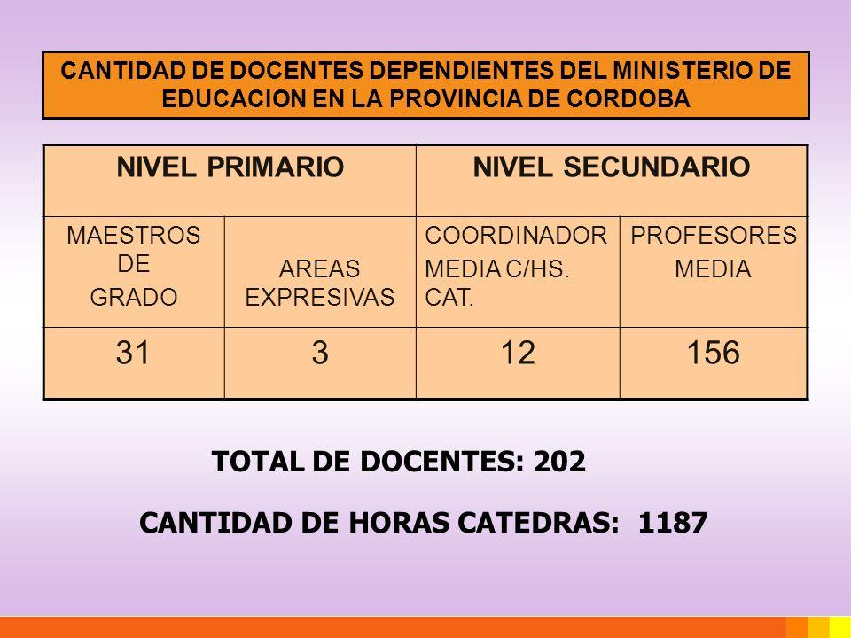 31 3 12 156 NIVEL PRIMARIO NIVEL SECUNDARIO TOTAL DE DOCENTES: 202