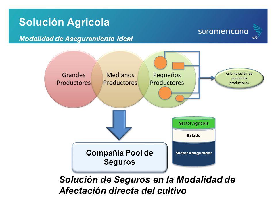 Aglomeración de pequeños productores Compañía Pool de Seguros