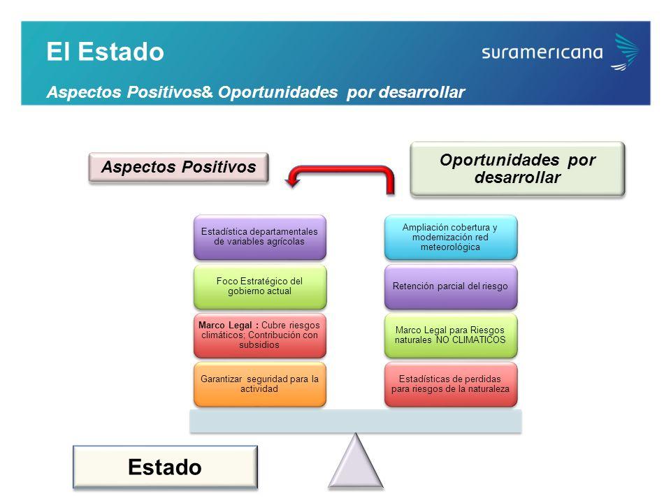 Oportunidades por desarrollar