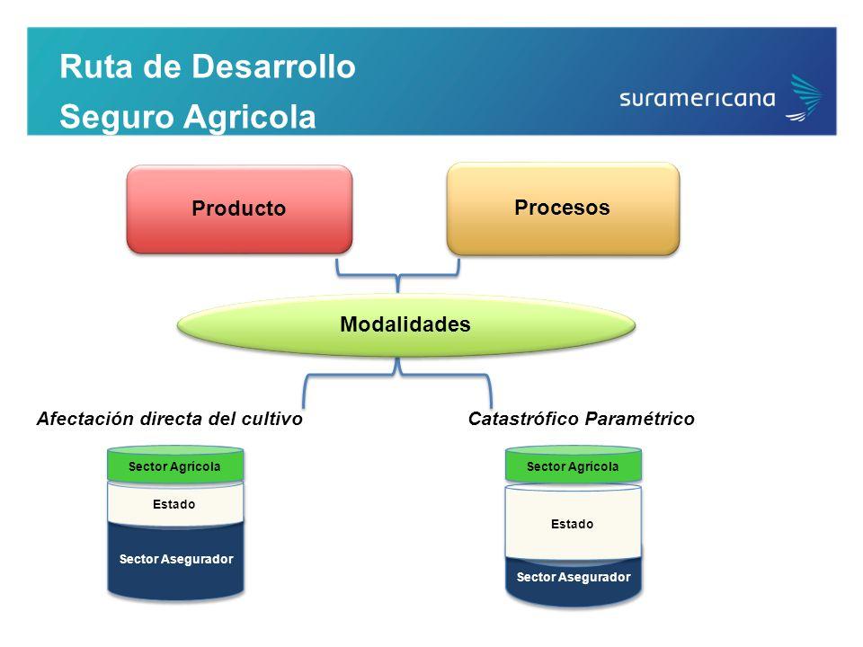 Ruta de Desarrollo Seguro Agricola Producto Procesos Modalidades